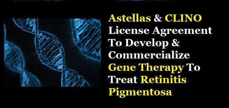 Gene therapy retinitis pigmentosa
